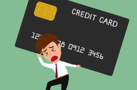CREDIT WARNING Mr Money warns of latest credit score cards with hobby rates of as much as 80%